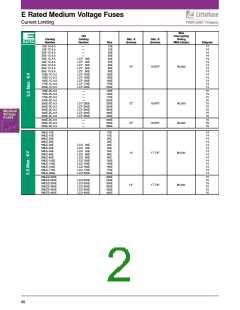 浏览型号80E-1C-15.5L的Datasheet PDF文件第2页